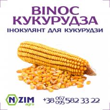 BiNOC Кукурудза РФ
