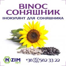 BiNoc Соняшник