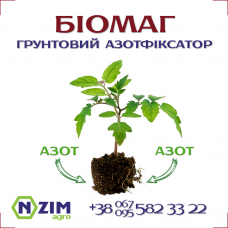 БіоМАГ РФ